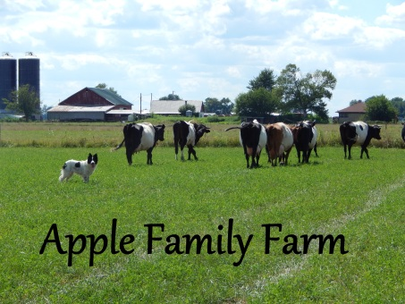 Apple Family Farm