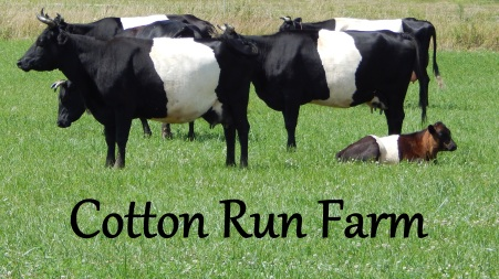 Cotton Run Farm